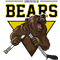 Sheffield Bears E